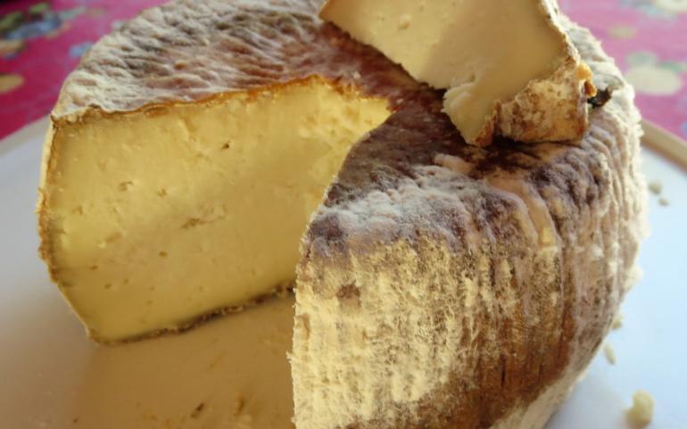 Non les trous dans le fromage Corse ne sont pas une fatalité.